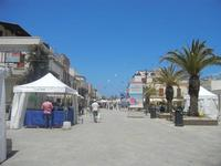 4° Festival Internazionale degli Aquiloni - Stand in via Savoia - 24 maggio 2012  - San vito lo capo (433 clic)
