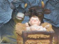 Primo Presepe artistico 8 gennaio 2012  - Marinella di selinunte (691 clic)