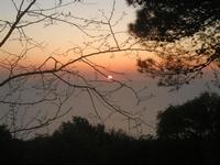 tramonto - 25 aprile 2012  - Erice (572 clic)
