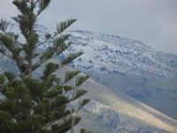 cime dei monti innevate - 12 febbraio 2012  - Buseto palizzolo (866 clic)