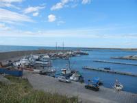 il porto - 15 aprile 2012  - Terrasini (859 clic)
