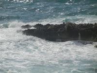 mare in tempesta all'Isulidda - 8 aprile 2012  - Macari (700 clic)