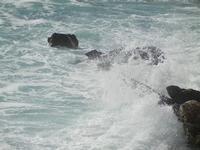 mare in tempesta all'Isulidda - 8 aprile 2012  - Macari (712 clic)
