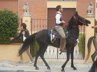 SPERONE - sfilata di cavalli - festa San Giuseppe Lavoratore - 29 aprile 2012  - Custonaci (598 clic)