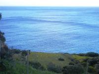 vista sul mare - 14 aprile 2012  - Riserva dello zingaro (734 clic)