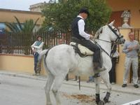 SPERONE - sfilata di cavalli - festa San Giuseppe Lavoratore - 29 aprile 2012  - Custonaci (688 clic)