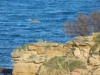 Cala Petrolo - canoe - 18 gennaio 2012   - Castellammare del golfo (483 clic)