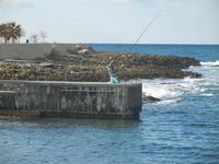 pescatore sul molo - 12 febbraio 2012  - Cornino (887 clic)