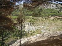 panorama area archeologica - 5 agosto 2012  - Segesta (1310 clic)