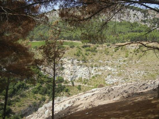panorama area archeologica - SEGESTA - inserita il 15-Jun-15