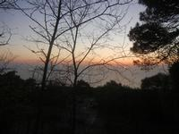 tramonto - 25 aprile 2012  - Erice (543 clic)