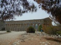 il tempio - 5 agosto 2012  - Segesta (961 clic)