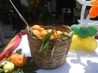 Festa di Primavera - Sagra della salsiccia, del pane cunzato e delle arance di Calatafimi Segesta - 22 aprile 2012  - Calatafimi segesta (555 clic)