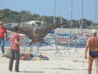 4° Festival Internazionale degli Aquiloni - 24 maggio 2012  - San vito lo capo (252 clic)