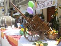 Festa di Primavera - Sagra della salsiccia, del pane cunzato e delle arance di Calatafimi Segesta - 22 aprile 2012  - Calatafimi segesta (598 clic)