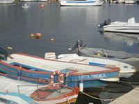al porto - 25 marzo 2012  - Marinella di selinunte (567 clic)