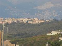 pineta e scorcio della città  pineta e scorcio della città visti da Zona Canalotto di Alcamo Marina - 3 agosto 2012  - Balestrate (856 clic)