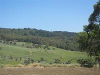 Bosco di Scorace - 13 maggio 2012  - Buseto palizzolo (408 clic)