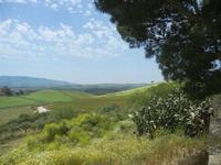 SIRIGNANO - Agriturismo - panorama agreste - 1 maggio 2012  - Monreale (947 clic)