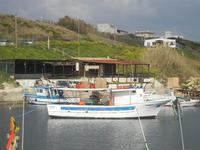 al porto - 25 marzo 2012  - Marinella di selinunte (611 clic)