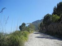 sul Monte Inici - 6 maggio 2012  - Castellammare del golfo (359 clic)