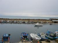 il porto - 5 febbraio 2012  - Marinella di selinunte (548 clic)