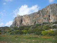 flora, falesia e torre di avvistamento - 8 aprile 2012  - Macari (773 clic)
