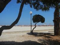 giardino pubblico e spiaggia - 12 agosto 2012  - San vito lo capo (242 clic)