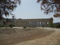 il tempio - 5 agosto 2012  - Segesta (1078 clic)