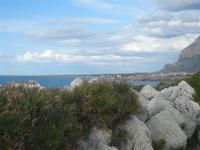 Riserva Naturale Orientata Capo Rama - 15 aprile 2012  - Terrasini (1010 clic)
