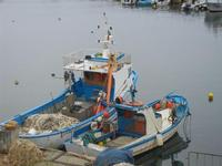 il porto - 5 febbraio 2012  - Marinella di selinunte (1131 clic)