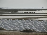 saline - 5 agosto 2012  - Marsala (843 clic)
