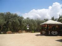 BIOPARCO di Sicilia - 17 luglio 2012  - Villagrazia di carini (338 clic)