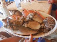 vassoio con pesci - La Torre di Nubia - 16 luglio 2012  - Nubia (382 clic)