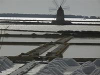 saline e mulino a vento - 5 agosto 2012  - Marsala (364 clic)