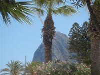 giardino pubblico e monte Monaco - 12 agosto 2012  - San vito lo capo (278 clic)