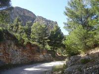 sul Monte Inici - 6 maggio 2012  - Castellammare del golfo (355 clic)