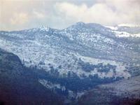 la neve sui monti - 7 febbraio 2012  - Castellammare del golfo (388 clic)