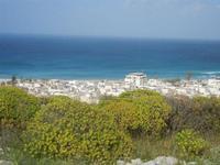 flora, scorcio della città e mare - panorama dalla collina ad ovest della città - 8 aprile 2012  - San vito lo capo (414 clic)