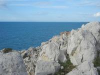 vista sul mare - R.N.O. Capo Rama - 15 aprile 2012  - Terrasini (633 clic)