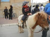 SPERONE - sfilata di cavalli - festa San Giuseppe Lavoratore - 29 aprile 2012  - Custonaci (506 clic)