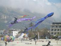 4° Festival Internazionale degli Aquiloni - 24 maggio 2012  - San vito lo capo (221 clic)