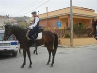 SPERONE - sfilata di cavalli - festa San Giuseppe Lavoratore - 29 aprile 2012  - Custonaci (498 clic)