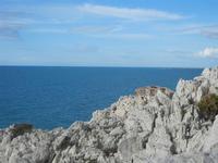 vista sul mare - R.N.O. Capo Rama - 15 aprile 2012  - Terrasini (1029 clic)