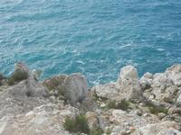 vista sul mare - R.N.O. Capo Rama - 15 aprile 2012  - Terrasini (1286 clic)