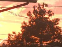 tramonto - 19 gennaio 2012   - Alcamo (421 clic)