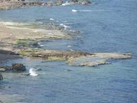un tratto di costa dalla periferia est della città - 26 marzo 2012  - Castellammare del golfo (345 clic)
