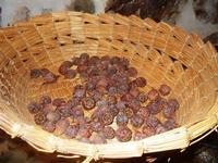 cesto con sorbe essiccate - piccolo museo etno-antropologico - Bosco di Scorace - Il Contadino - 13 maggio 2012  - Buseto palizzolo (1148 clic)