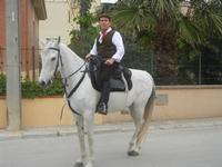 SPERONE - sfilata di cavalli - festa San Giuseppe Lavoratore - 29 aprile 2012  - Custonaci (494 clic)