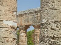 il tempio - 5 agosto 2012  - Segesta (451 clic)
